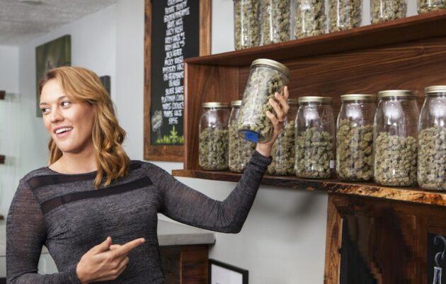 Information about Cannabis dispensary Massachusetts